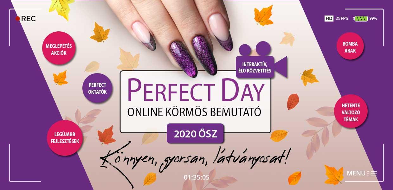 PERFECT DAY - INGYENES KÖRMÖS BEMUTATÓ